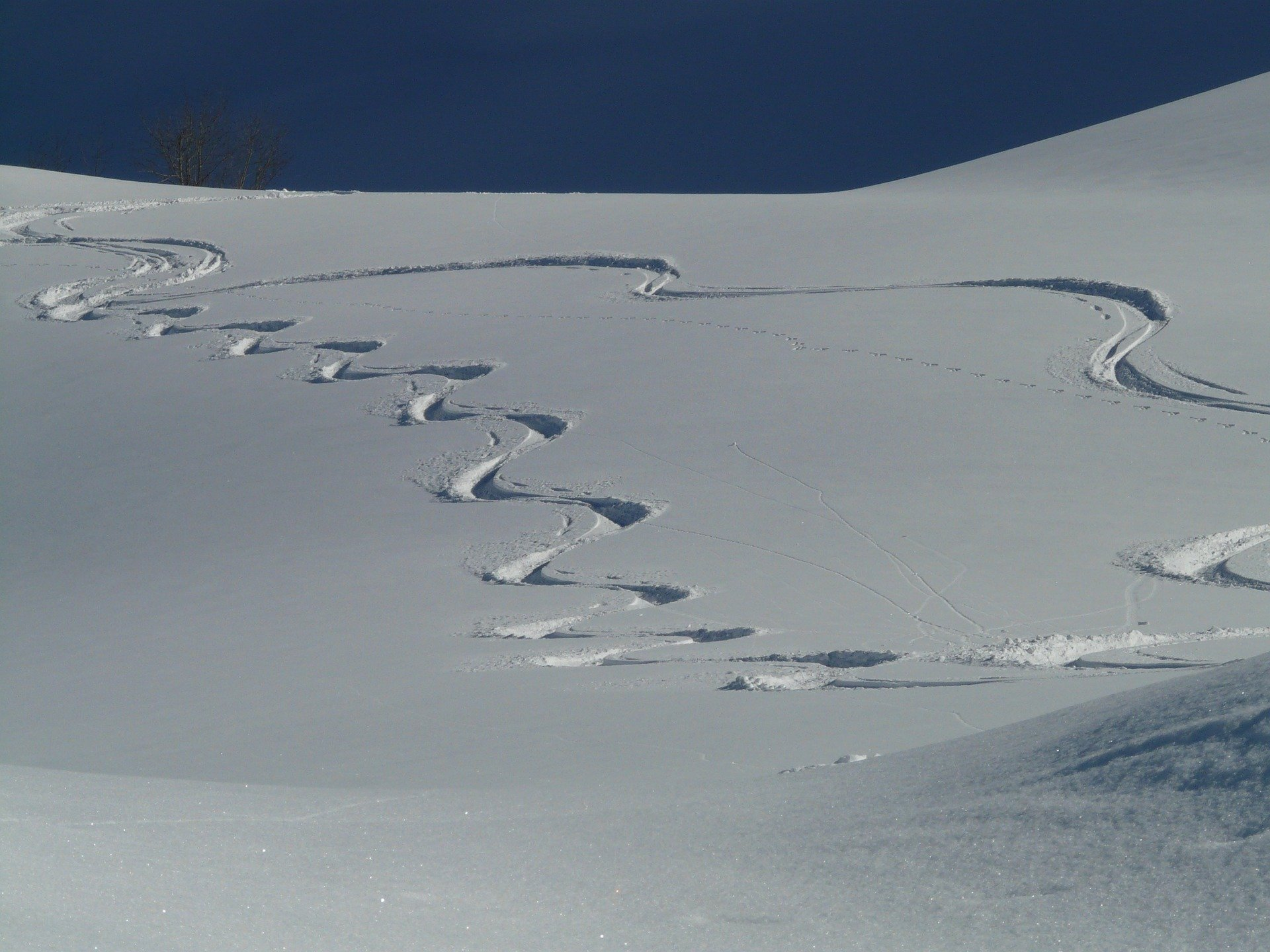 backcountry ski lines
