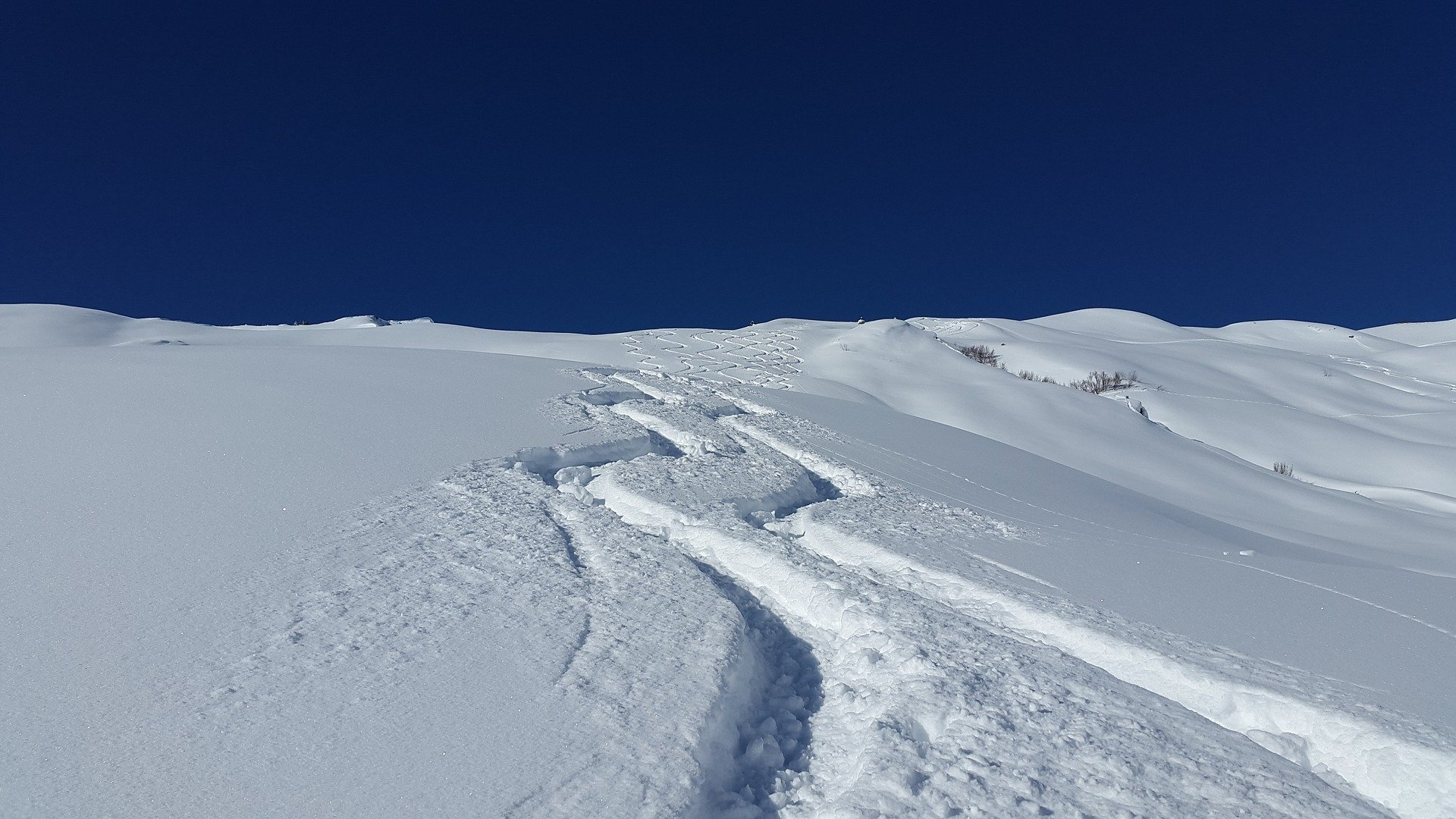 fresh backcountry ski lines